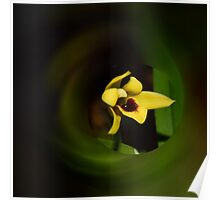 'picture perfect' Orchid 19 Poster