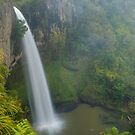 Bridal Veil falls, Waikato, New Zealand by Paul Mercer