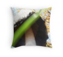 Underbelly of a Mushroom Cap Throw Pillow
