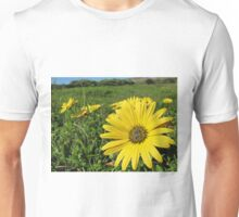 Cape Weed - Daisies in the meadow Unisex T-Shirt