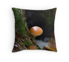 Spider's Sunshade Throw Pillow