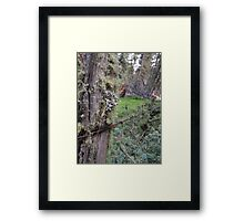 Forgotten Boundaries Framed Print