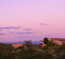 Desert Living at Sunset by CynLynn