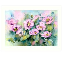 Pink Poppies (Papaver Somniferum) Art Print