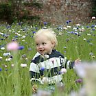 Freddie in the Cornflowers by Peter Bodiam