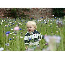 Freddie in the Cornflowers Photographic Print