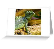 Basilisk Greeting Card