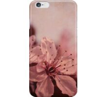 cherry tree flowers  iPhone Case/Skin