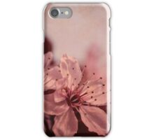cherry tree flowers  iPhone Case/Skin