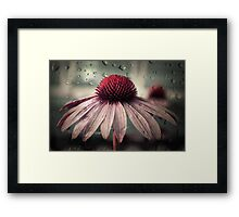 sad solitude Framed Print