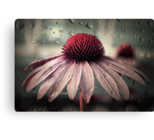sad solitude Canvas Print