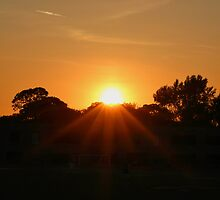 Sunset Six One by Gilda Axelrod