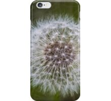 Dandelion Clock iPhone Case/Skin