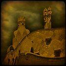 Storm Watch on La Pedrera. by egold