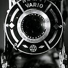 Vario Antique Camera Still-Life by MBWright88