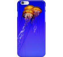 Trio of Jellyfish in a Tank iPhone Case/Skin