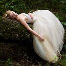 Woodland Fairy by Megan Vaughan