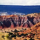 """ Ghost Ranch Painted desert "" by Paul Albert"