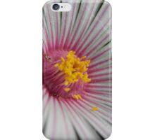 Fan Flower iPhone Case/Skin