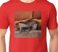 ABOUT TIME TO DUST THE LIVING ROOM Unisex T-Shirt