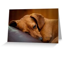 Goodnight Gracie Greeting Card