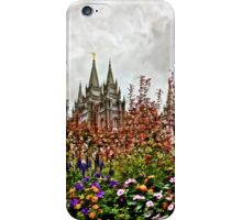 Castle Temple i phone Case iPhone Case/Skin