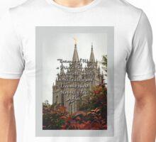A Prince Can Meet A Princess Unisex T-Shirt