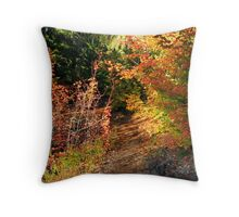 Pathway to Your Campsite   Throw Pillow