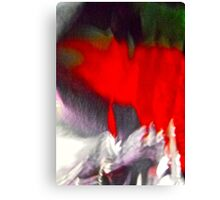 Abstract 5825 Canvas Print