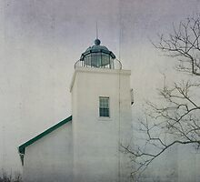 Horton Point Lighthouse by Bethany Helzer