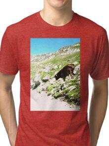 mountain pass cow Tri-blend T-Shirt