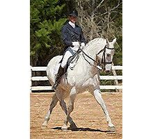 Dressage Horse Portrait Photographic Print