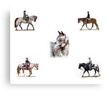 Appaloosa Versatility Horse Portrait Canvas Print