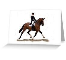 Dressage Horse Study Portrait Greeting Card