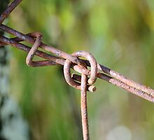 Wire Knot by DoubleCreations