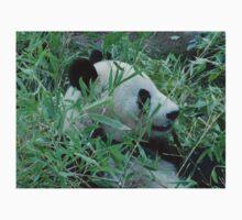 San Diego Zoo Panda  Kids Clothes