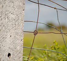 Wire Fence by DoubleCreations
