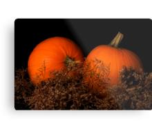 Pumpkins in Waiting Metal Print