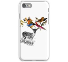 DEER BIRDY iPhone Case/Skin
