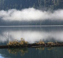 low clouds across the lake by axieflics