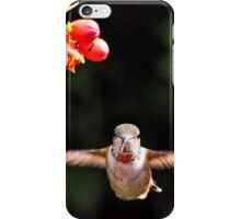 Early Morning Portrait iPhone Case/Skin