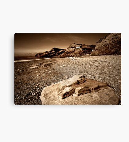 Before History Canvas Print