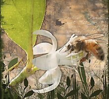 Bee & Praying Mantis by Lesley Smitheringale