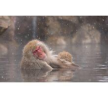 Snow soak Photographic Print