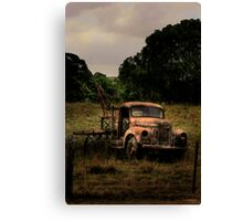Retired to the back paddock Canvas Print