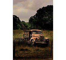 Retired to the back paddock Photographic Print