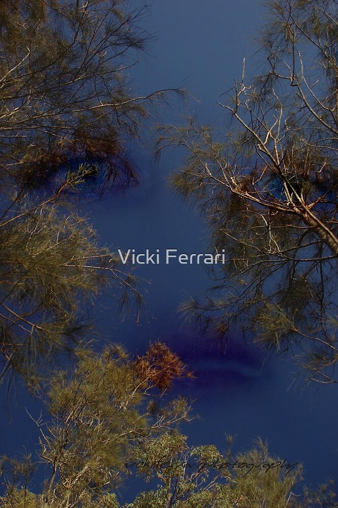 Observer Above © Vicki Ferrari Photography by Vicki Ferrari