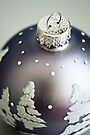 Silver Tree Bauble by Renee Hubbard Fine Art Photography