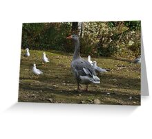 Goose Among Friends Greeting Card