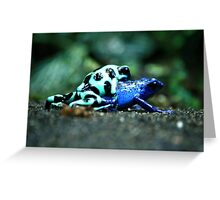 Nature Lovers Greeting Card